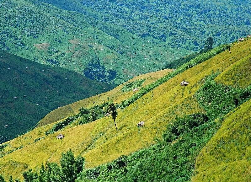 So verschwindet der Wald schnell, und die steilen Hügel werden entblößt.