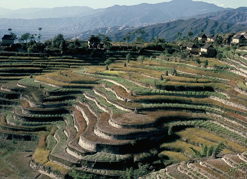 Wer in Nepal gewandert ist, der kennt die malerischen Landschaften und eindrucksvollen Reisterrassen.