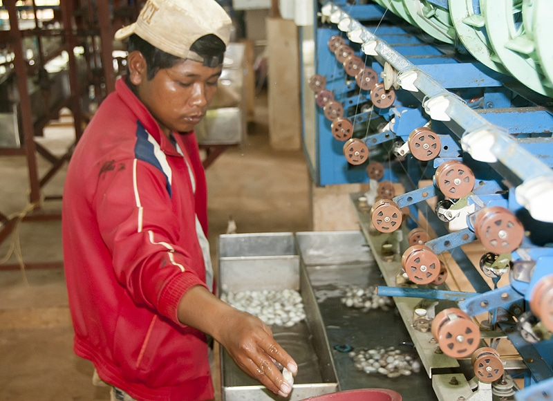 Besonders hochwertige Kokons können auch maschinell von weniger gut ausgebildeten Jugendlichen abgehaspelt werden. Das schafft zusätzliche Arbeitsplätze für die Jugend.